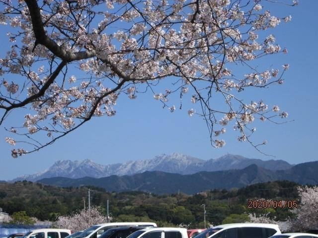 天気も快晴・春日和<br />今日はアルバイトもコロナウィルスのため始業開始が2週間先になり、松山市の隣街の東温市まで足を運んできました。<br />花冷えした寒い日で、西日本最高峰の石鎚山も雪をかぶって真っ白になっています。