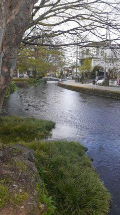 静岡東部日帰り散策の旅2020・04(パート2)