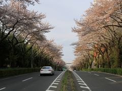 2020の国道18号(横浜市十日市場)へ・・・