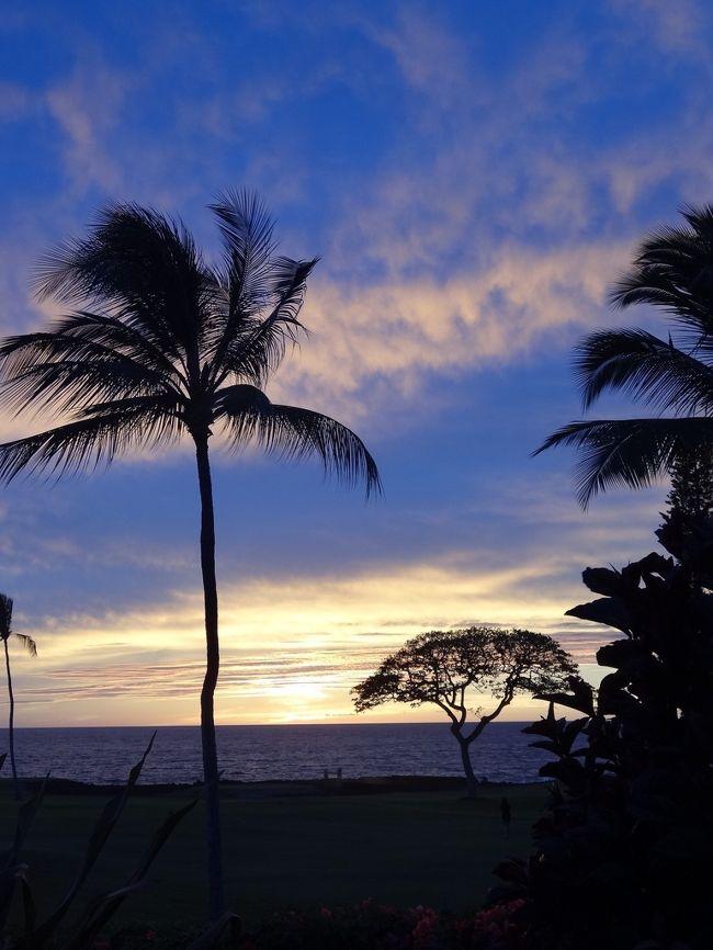 2年ぶりのハワイ島。2018年の噴火する直前に行って以来で、一年前から航空券を予約し楽しみにしていましたが、新型コロナウイルスの猛威にはかないません。全てキャンセルしました。備忘録として残します。<br /><br />ハワイは3/26から外出規制、また旅行者に対しても入国後2週間の検疫を義務付けるようになっており、行ってもホテルから一歩も出れない状況になってしまいます。いつ外出規制が解かれるのか、先が全く見えない状態が続いています。<br /><br />早くワクチンや治療薬が開発され、旅行が出来るようになってほしいものです。今は我慢の時ですね。<br />
