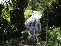 セントアン オーチョリオス ショーパークガーデンズ(Shaw Park Gardens, Ocho Rios, St. Ann)