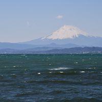 江ノ電に乗って、江ノ島に行ってきました