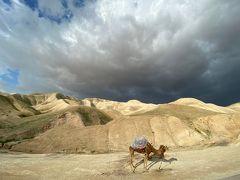 何の知識も持たずの秘境イスラエル・ペトラ遺跡・死海8日間の旅 ⑥~帰国