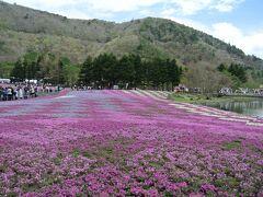 ゴールデンウィークに行く富士山絶景周遊旅・焼津、富士芝桜まつり、忍野八海
