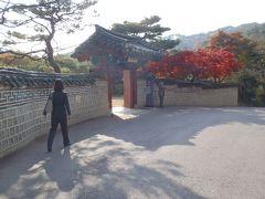 義父母・叔母と秋のソウル3日間(2011年11月)
