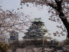 お花見2020 京橋