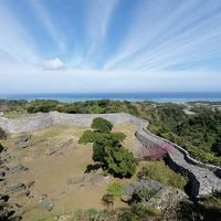 1月の沖縄(前編:本島北部ツアー編)