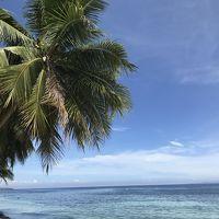 ジンベイザメと泳ぐフィリピンセブ島の旅 2日目