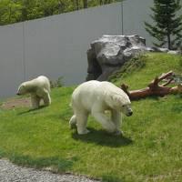 円山動物園と温泉
