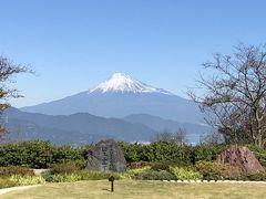 大阪発 静岡~浜松 絶景も温泉もグルメも満喫3日間!