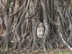 タイ旅行8日目:古都アユタヤで遺跡巡り~バンコク