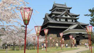 国宝5城のひとつ「松江城」は春爛漫