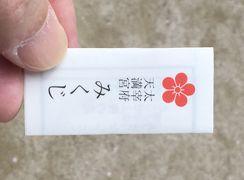 福岡・山口遠征 (その7) 太宰府③ 太宰府で引いたおみくじは大吉!
