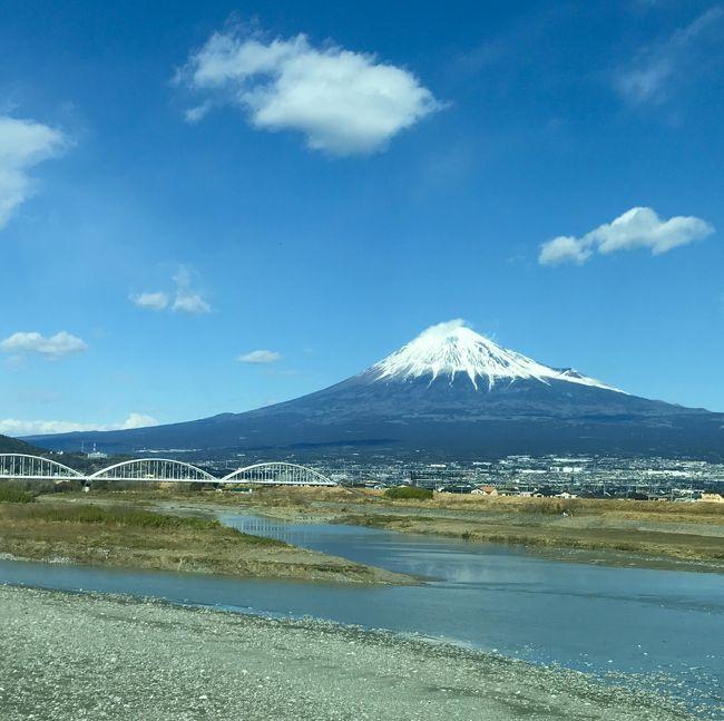 2020年春休み親子旅は湯河原と箱根の温泉へ☆vol.1 まずは、湯河原温泉の梅林へ('▽')r