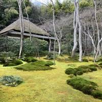 女ひとりで京都旅!(①嵯峨野をぐるりとオタク旅編)