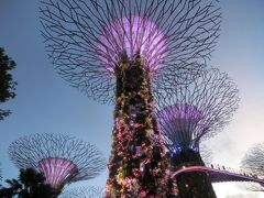 2020新春 ニュージーランド23:経由地のシンガポールでシンガポール航空の無料ツアーに参加後、帰国