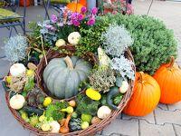 ちょっと散歩 ツォンス&Josefshof ドイツで見つける大きい秋
