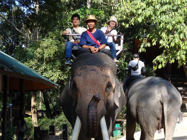 タイのロイクラトーンでチェンマイにコムローイを上げに24年ぶりに家族で旅行しました。長男は海外旅行が初めてですのでバンコクで定番の観光をしてロイクラトーン発祥の地スコータイへ寄って最終目的地のチェンマイまでの観光を兼ねての旅行です、前夜にメーリム会場でコムローイを上げ、今日はラストワンでチェンマイ郊外の観光に出かけました。