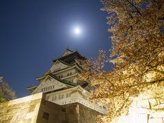 大阪城の夜桜2020