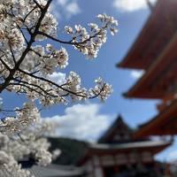 女子旅にオススメ!絶対にハズしたくない京都ジェニックカフェ6選