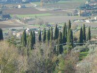 イルミネーションの季節のイタリア旅2019-20~⑫中世の街並みアッシジ街歩き(3)