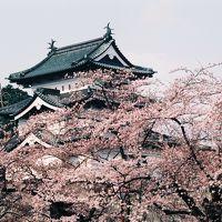 【思い出の旅】レールバスとみちのくの桜に出会う旅