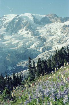 Mt. Rainier, 1979.