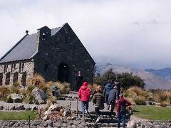 ニュージーランド南島ハイキング旅行② ~テカポ湖~