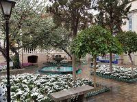 4度目のイラン訪問「モガッタムの家」