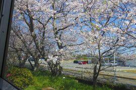 桜を眺めながら日本最西端の駅を目指す旅