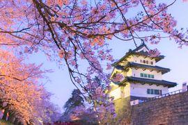 2015 APR 桜の季節の弘前紀行(3/3)弘前旅のメイン 日本一のさくらまつり@【日本100名城No.4】弘前城