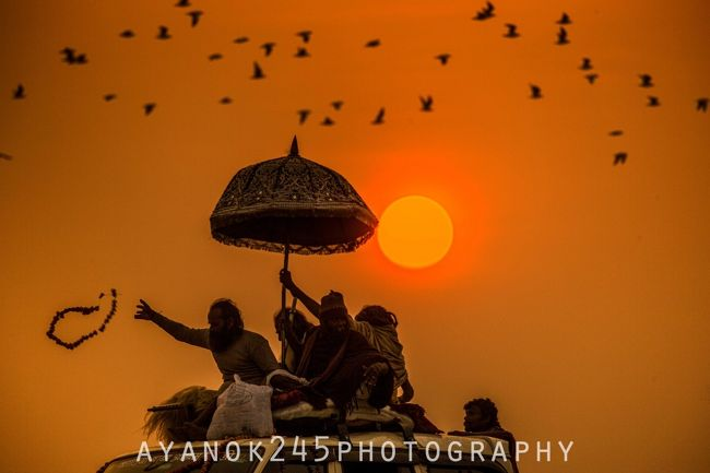 <インド・クンブメーラ><br />ヒンドゥー教最大の祭典、サドゥーの圧巻な行進と沐浴!<br /><br /><旅人のプロフィールです><br />◆ぜひこちらもフォローお願いします!<br />https://linktr.ee/explorable2018<br /><br /><Instagram><br />訪問済みの世界700都市以上の写真<br />https://www.instagram.com/explorable2018/<br /><br /><facebookページ><br />世界雑貨の販売もする予定<br />https://www.facebook.com/Explorable.club<br /><br /><TIK TOK><br />世界の動物や風景の短め動画<br />https://tiktok.com/@ayanok25<br /><br /><YouTube><br />旅vlog<br />https://www.youtube.com/channel/UCylqM78QjCMlRWLjj9ocLXQ<br /><br /><note><br />世界旅行学開講中!<br />https://note.com/explorable20<br /><br /><WEBサイト><br />ポートフォリオ<br />https://www.ayanok245-photo.com<br /><br /><Amazon Kindle><br />キンドルアンリミテッドで配信中<br />https://amzn.to/3egQR1A<br /><br />・<br />・<br />・<br />・<br /><br /><クンブメーラとは?><br />クンブメーラとはヒンドゥー教最大の宗教行事です。3年ごとに場所を変えておこなわれ、2019年はバラナシ近くのアランハバードで開催されました。<br /><br />普段、放浪しているサドゥーが(ヒンドゥー教におけるヨーガの実践者や修行者のこと)がアランハバードに集まり、一斉沐浴をします。アラハバードは、ガンジス川とヤムナー川そしてサラスヴァティー川が流れ、この三つの川の合流地点が沐浴場所です。<br /><br />インド中からも教徒が集まり、沐浴と祈りのために訪れます。中国人の春節のようなもので、その時期には移動が困難になります。なかには、近郊都市や山越えをして歩いてくる巡礼者もいます。インド人の特に年配者は熱心なヒンドゥー教徒が多く、毎回必ずクンブメーラまできているというご老人とも話をしました。<br /><br />3千万人以上、多いときには一億人が訪れるこのお祭りの開催場所では、キャンプ場が川の周りを埋め尽くすように建てられます。旅行者は宿の確保が難しく、私は某旅行会社を介した予約で詐欺にあいました。詳しくは、下記に書いています。<br /><br /><br /><サドゥーとは?><br />サドゥーは基本男性が多く、インド国外あわせても500万人以上いると言われ、仏教でいう「出家」のように、家族を持たず、欲を放ち、瞑想をして暮らしています。<br /><br />よってヒンドゥー教徒からは崇められ、祭り中の行進時、絶対にサドゥーに触ってはならず、距離を置く必要があります。<br /><br />サドゥーのなかにも、順列があるそうで、ナガと呼ばれる聖者は、戒律を厳しく自分に課して、常任には考えられない境地に達しているとの情報を現地で耳にしました。なんでも片手を40年間上げ続けているナガが北部の方に住んでいて、今年のアラハバードにきていると聞いたのですが、私は見つけることができませんでした。<br /><br />トップのナガサドゥーは、政治的な権力ももち、インドの政治家たちはナガの決定に従うこともあるそうです。<br /><br />一方、ニセサドゥーや観光サドゥーなどもいて、施しを受けたい、お金をもらいたくてそのような格好をしている人もいます。地元の人に、どういうサドゥーかを尋ねると皆知っているので、尋ねた上で、お金を寄付するといいと思います。<br /><br /><br /><br /><br /><クンブメーラ参加方法><br />クンブメーラ自体は1ヶ月近くありますが、サドゥーの一斉沐浴の日は数日しかありません。2019年のアラハバードは、2月4日が一斉沐浴の日でした。<br /><br />私はしつこく英語で情報を調べたのですが、日本語で聞けるのは現地旅行社くらいしかないかも?バラナシのホテルなどに聞いてもいいかもしれません。もし、サドゥーの沐浴ではなく、教徒の沐浴だけでいいやという方はその期間中に行けば大丈夫です。