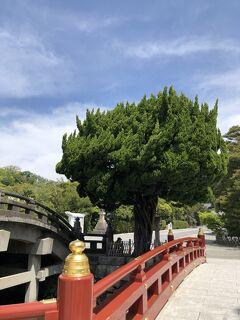 お散歩@鎌倉&江ノ島