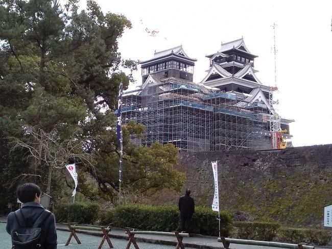 肥薩線に乗る ぶらり湯けむり霧島・熊本:<br />三日目の朝、ホテル法華クラブ熊本に荷物を預け、徒歩で震災後の熊本城の復旧状況を見に行く。<br /> 1607年、築城の名手と呼ばれた加藤清正によって建てられた。1877年の西南戦争でも落城しなかった堅城だが、2016年の震災によって被害を受けた。<br /> 震災から4年目、復興見学ルートに沿って歩く。天守には復興工事中で近づけなかったが広大な敷地内のあちこちに痛々しい瓦礫があり、天災の怖さを目の当たりにした。<br /><br /> 今回の旅は暖かいはずの九州が北海道と同じくらい寒かったので、気候についてはちょっと期待外れ!でも元気な叔母に会えたこと、肥薩線に乗ったこと、霧島温泉のぬくもりと共に最高だった。