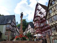 2012夏ベルギーとドイツの旅11:ミルテンベルクとアシャッフェンブルク