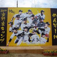 2017年2月 ANA修行2回目 沖縄旅行 HND-OKA-HND