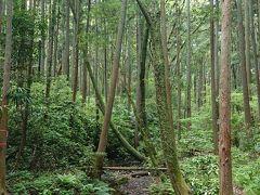 森と水の公園 2020.5.5