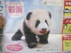 2019冬・平成最後の関西旅(パート1:アラフィフのおっさんがバースデーにパンダ萌え~)