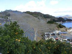 愛媛旅行2泊3日(2/3)宇和島で現存12天守を制覇して段々畑で癒される