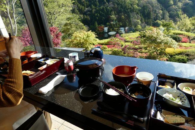エクシブ箱根離宮では、現在中華粥とバイキングの朝食は休止していて、和朝食膳とアメリカンブレックファーストの朝食を提供しています。<br /><br />そこで、この日は和朝食、翌日はアメリカンブレックファーストを予約しました。<br />
