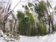 天寧寺 (てんねいじ)吹雪の中、新選組・近藤勇の墓所へ。徳川幕府への忠誠が・・・享年35歳
