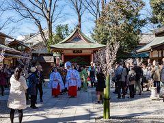 所沢/川越/飯能ぐるり旅【1】~縁結びの神様~川越氷川神社