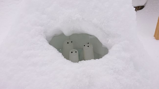 2020年北海道雪まつりの旅6日目最終日 小樽