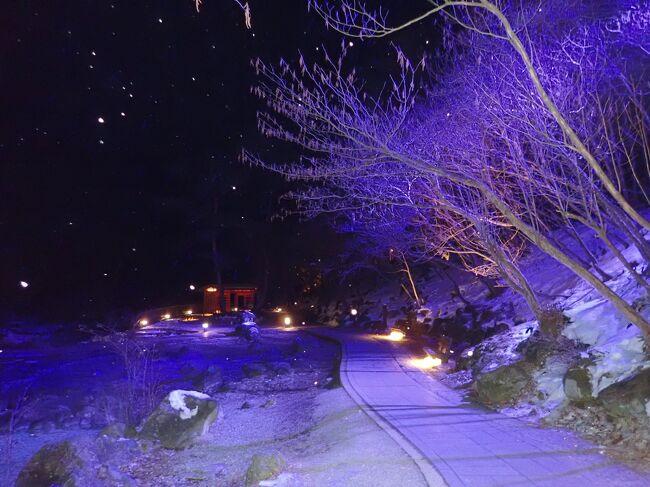 草津温泉といえば、それが群馬県にある事を知らない人は多くても、誰でも聞いたことのある有名な温泉。<br />18歳まで群馬に住んでいながらあまり行ったことはなく、人生で3回目の草津温泉へお正月に言ってきました。しかも、家族で行くのは初めてです。