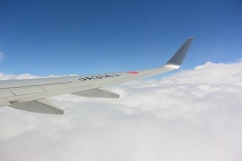 2019年6月秋田旅は旧友を訪ねての旅でした。<br /><br />1日目前半<br />☆羽田空港から出発<br />☆秋田空港に到着<br />☆モロヘイヤ麺ランチ