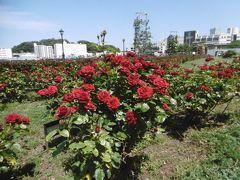 ヴェルニー公園  in  YOKOSUKA