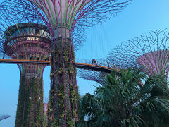 【2020】シンガポール旅行�
