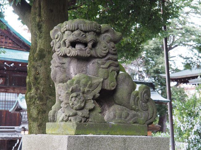 神明神社(しんめいじんじゃ)<br /><br />福島県会津若松市中町1-46<br />2020.2.9.10の二回参拝しました。<br /><br />街中は駐車場が無く、神社さんにも無かったので<br />コインパーキングを探しました。<br /><br /><br />とは言うものの、神明通りまで歩いて来たのですが<br />商店街・・・・<br />うっかり 通り過ぎてしまいました(^^;<br /><br />と鳥居を発見!<br />良かったあ・・と胸を撫で下ろしましたが!!!!!!!!!!!!<br /><br />宮司さまは所用で 車でお出掛けでした。<br />明日 また参ります。と お話して 境内へ<br />参拝させて頂きました。<br /><br />ご祭神<br /><br /><br />天照大御神(あまてらすおおみかみ)  通称:お伊勢さま <br />応神天皇(おうじんてんのう)     通称:八幡さま <br />宇迦之御魂神(うかのみたまのかみ)   通称:お稲荷さま <br />    <br />大国主命(おおくにぬしのかみ) 大国さま、大地を象徴する神格 <br />秋葉大神(あきはのおおかみ) 火防、鎮火の神様 <br /><br />沢山の神が祀られている町の中の神社さんでした。<br /><br /><br />神道流槍刀術の祖<br />飯篠山城守家直の勧請により創建されたと言う。<br /><br />以降松平家までの歴代会津領主から崇敬を受け、<br />庇護を受けた神社さん。<br /><br />しかしこちらも<br />戊辰戦争によってすべてを焼失してしまった・・のです。<br /><br /><br />