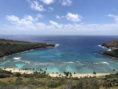 美しいロックダウンの中のハワイ②