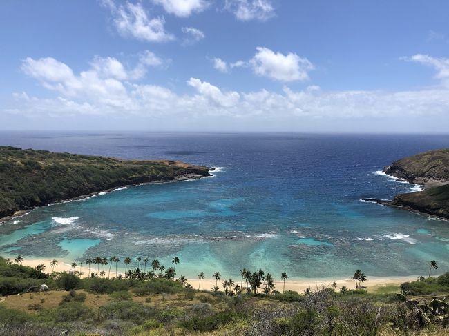 ハワイに住んで25年。<br />①島がロックダウンされるなんて初めての経験(もちろんだけど)。当初ロックダウンも3月23日2020年から4月30日までの予定だったけど、その間は失業保険も入ってこなかったり、家にいることが仕事とわかっているけど、不安な日々を過ごしていました。もし家族がウイルスにかかったら、いや自分がかかったら、また仕事に戻れなかったらetc...........<br /><br />②③④5月1日からロックダウンが、5月30日と延期になりましたが、、州の公園を解放してくれたり、開けて良いお店や、カルチャー・クラスも一対一なら<br />受けてもいいなどと少し息ができる環境に変わってきました。運動に外に出るだけで、心が明るくなりました。<br /><br />⑤6外に出てみると蘇生した美しいハワイが待っていたのです。最近、ロックダウンが6月30日に延びましたが、アラモアナ・ショッピングセンターも昨日から全てのお店ではないですが、再オープンしました。<br /><br />⑦6月5日からは制限はたくさんありますが、レンストランで食事をとることもできるようになります。サロンも完全予約制になりますが、オープンします。<br /><br />そろそろロックダウンが解除されて行くのを感じます。ただ、感染者を増やさないように、ハワイに住んでいない人が、がハワイに来た場合は14日間の隔離があります。<br /><br />ではそんな今のハワイの旅にご案内いたします
